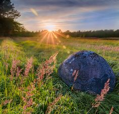 Sunset on the Russian expanses by Andrew Ignatov on Summer Sun, Sunrise, Trees, Clouds, Sky, Landscape, Flowers, Beauty, Beautiful