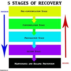 alcohol recovery model