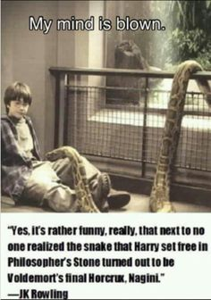 Maybe in the sense that the movies used the same snake to act the two parts, but Voldemort had Nagini long before Harry came around. She was with Voldemort at the time Harry was in the zoo. Harry Potter Jokes, Harry Potter Fandom, Nagini Harry Potter, Harry Potter Snake, Voldemort, Expecto Patronum Harry Potter, Desenhos Harry Potter, Potter Facts, Mind Blown