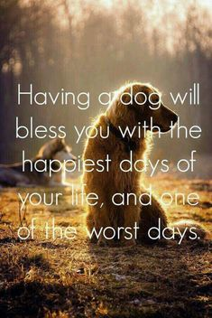 Saying goodbye to a constant companion. Dog quote