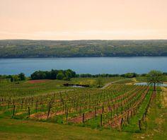 Wine Tasting in the Finger Lakes, NY