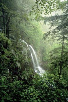 The South's National Parks: Lewis Spring Falls Shenandoah National Park