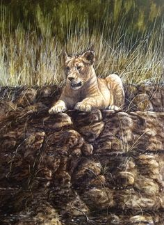 Look at this beautiful Lion Cub in #oils by wildlife artist Ben Waddams. Now available on ArtTutor Oil Painting Lessons, Beautiful Lion, Wd 40, Lion Cub, Birch Trees, Animal Totems, Wildlife Art, Learn To Paint, Animal Paintings