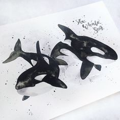 Everything will be alright. You whale sea. Calligraphy Practice, Modern Calligraphy, Whale Illustration, Watercolor Whale, Everything Will Be Alright, Brush Type, Killer Whales, Whale Watching, Puns