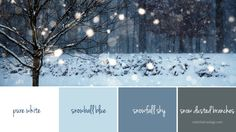 color palette - snow