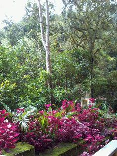 hermosos paisajes en el Santuario de la virgen de torcoroma