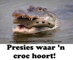 88 Best Afrikaanse Snaaksies Images Afrikaanse Quotes News South
