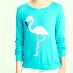 NWT Wildofox Flamingo Blue Sweater Size XS NWT NWT Wildofox super soft sweater. Size XS. Blue with pink flamingo. In perfect condition. Wildfox Sweaters