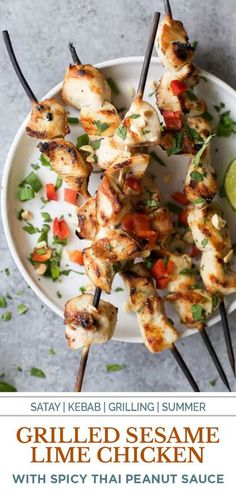 This Grilled Sesame Lime Chicken with Spicy Thai Peanut Sauce is a grilling and BBQ meal the family will go nuts for this summer! The nutty flavor from the chicken combined with the Spicy Thai Peanut Sauce will take you straight to Thailand in one bite. It is creamy, spicy, zesty and all together deliciously addicting. I'm warning you to make a double batch of the sauce. You're gonna need it! #chickenrecipes #grilledchicken #chickenkebab Healthy Eating Recipes, Healthy Chicken Recipes, Beef Recipes, Cooking Recipes, Healthy Eats, Easy Recipes, Best Dinner Recipes, Summer Recipes, Healty Dinner