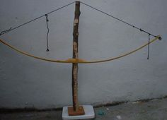Wilderness Survival - Construction of a Bow from Osage Orange