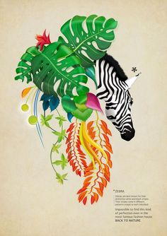 Image result for Nature posters