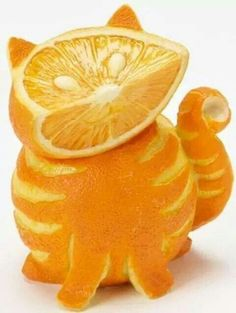 Can cats eat oranges? The short answer is no, cats can't safely eat oranges. In fact, due to the essential oils contained in oranges, the citrus fruit is considered toxic to cats. Here's what you need to know about oranges and cats. Food Styling, Animal Eating, Funny Orange, Orange Tabby Cats, Orange Art, Orange Peel, Color Naranja, Tree Wall Art, Fruit Art