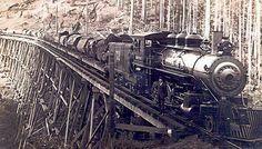 train trestles   Log Train On Trestle. by trollmongo