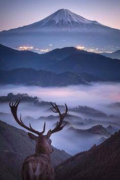 """Chasing angels or fleeing demons, go to the mountains."" ― Jeffrey Rasley Dream view of Mt. Fuji - Shimizu-Ku Shizuoka, Japan Photo by Musia ("
