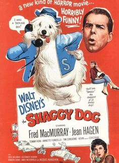 The shaggy dog movie