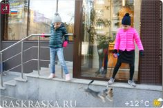 Dogs section in raskraska. Canine pictures and cartoons for kids free. Dog Photos, Dog Pictures, Cartoon Kids, Yorkshire Terrier, Projects For Kids, Moscow, Sketches, Photo And Video, Dogs