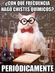 Gato_quimico - ¿Con qué frecuencia hago chistes químicos? #learn #spanish #jokes
