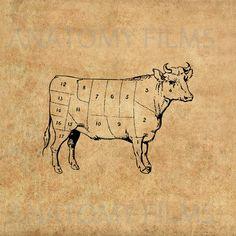 Digital Files, Clip Art, Transfer, T-Shirts, Pillows, Tea Towels, Clipart, Tote Bags, Cattle, Beef, Butcher