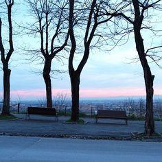 Due panchine attendono il tramonto  #movingculturebrescia #atlantediviaggio #castellodibrescia #sunset #sunset_pics #sunsetlovers #trees #panchina #igersoftheday #lookmycity #landscape #igersbrescia #minimal_lookup #bresciasegreta #brixia_scatti #volgobrescia #vivobrescia #volgolombardia #igerslombardia #picoftheday #instagood #tagsforlikes #follow4follow