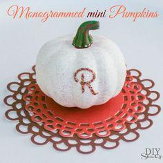 Monogrammed Mini Pumpkins tutorial @diyshowoff