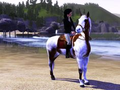 equestrian sims 3 horses | Downloads