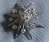 One of Queen Elizabeth's preferred brooch, The Lady Jardine star brooch
