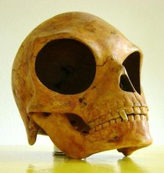 Is this an Alien Skull? It was found on the Danish Island called Sealand--- unexplained.mysteries.com