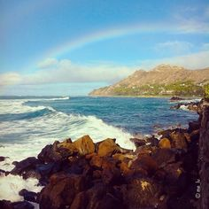 …. | Was greeted by this beauty on my way home. Hope your having a wonderful weekend! Black Point, Hawaii