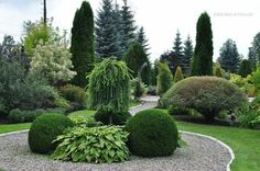 landscaping – Gardening Ideas, Tips & Techniques Outdoor Landscaping, Landscaping Plants, Front Yard Landscaping, House Landscape, Landscape Design, Back Gardens, Outdoor Gardens, Evergreen Garden, Side Garden