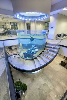 The fish tank will make you obtaining loosened up and relaxed doing your food preparation activity. Trying to find the fish tank kitchen suggestions? - Salvabrani 11 Unbelievable Home Aquarium Setup That Will M