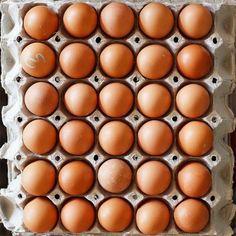 10 Paleo Snacks You Can Make Using Eggs