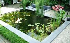 Beste afbeeldingen van tuinvijvers landscaping backyard