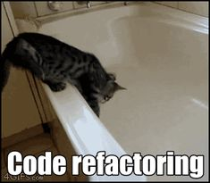 Code refactoring. So true. So true. Cat falls in water!  To to funny! Poor kitty!