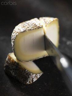 """""""Cabri de Sologne"""" un des nombreux fromages de France"""