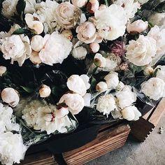 Vintage floral #vsco #vscocam #vsvintage #vsfloral #vscolife