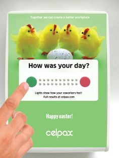 The Celpaxers wish you a green easter!  Around Easter is when the question of the chicken and the egg appears: what comes first: do you measure to see if you're improving at work or do you improve and then measure? Do you recruit more chickens to produce more eggs, or do you find a way together with your existing chickens to help them lay more eggs? Think no more ;)