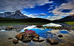 Waterfowl Lake, HDR, forest, mountains, Banff National Park, Alberta, Canada