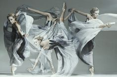 Ballerinas in Motion