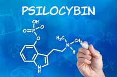 """Researchers at the Psychiatric University Hospital of Zurich have now shown that psilocybin, the bioactive component in the Mexican magic mushroom, influences the amygdala, thereby weakening the processing of negative stimuli."""