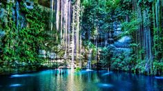Cancun and Riviera Maya tours with visits to cenotes to swim, dive and snorkel. Learn more about the cenotes in Mexico's Yucatan Peninsula. Beautiful Places To Visit, Beautiful World, Places To See, Amazing Places, Wonderful Places, Hidden Places, Secret Places, Beautiful Scenery, Beautiful Images