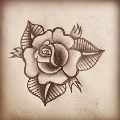 First traditional rose to draw