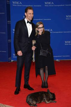 Actors Tom Hiddleston (L) and Carrie Fisher with her dog Gary attend the White House Correspondents' Association Dinner on April 2016 in Washington, DC. Hiddleston Daily, Tom Hiddleston Funny, Chris Hemsworth, White House Dinner, Carrie Frances Fisher, Gary Fisher, White House Correspondents Dinner, Damian Lewis, Michelle Dockery