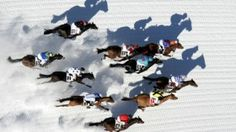 Four unique horse races to rival Siena's palio http://www.high50.com/travel/four-unique-horse-races-to-rival-sienas-palio