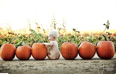 Fall Baby Pictures, Fall Family Photos, Holiday Pictures, Halloween Pictures, Baby Pumpkin Pictures, Fall Pics, Fall Baby Pics, Western Family Photos, Outdoor Baby Pictures