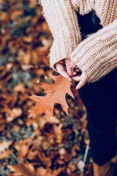 Autumn on Hampstead Heath (fall season photography)