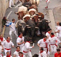 Encierros en Pamplona, Espana son muy popular en la gente. Los toros son especialmente para las corridas de toros.