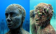 mexico's amazingly haunting sculptures: art with a purpose to promote coral growth