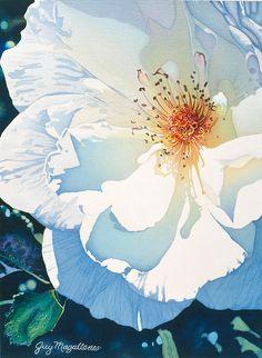 Floral Watercolor Paintings - Blanca by Guy Magallanes (white poppy? Watercolour Painting, Watercolor Flowers, Painting & Drawing, Watercolors, Watercolor Artists, Arte Floral, Illustration Blume, Guache, Botanical Art