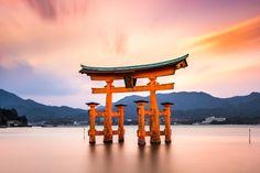 Horoscopul japonez: Ce spune grupa sanguina despre tine?