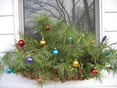 Christmas window box idea! Use the leftover trimmings from your branches.